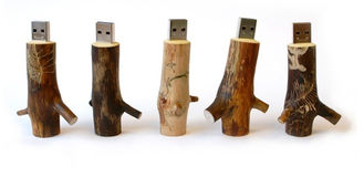 China Custom Wooden Flash Drives Brown Color At Least 10 Year Data Retention factory